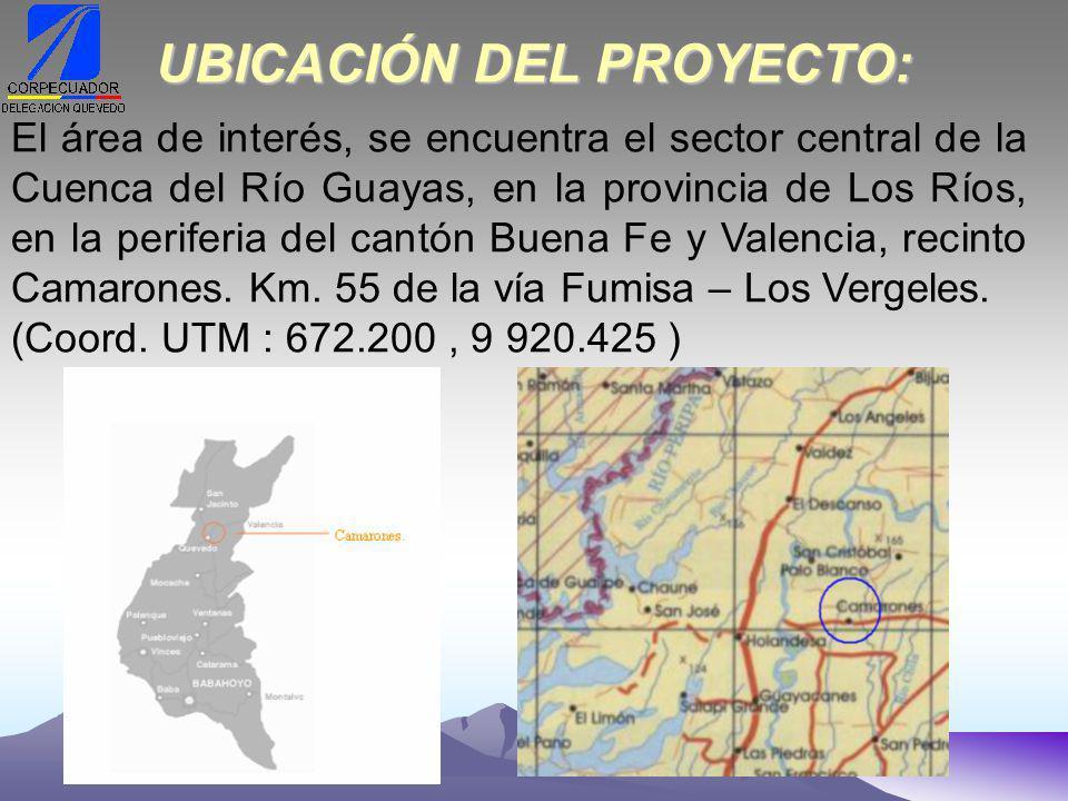 UBICACIÓN DEL PROYECTO: El área de interés, se encuentra el sector central de la Cuenca del Río Guayas, en la provincia de Los Ríos, en la periferia del cantón Buena Fe y Valencia, recinto Camarones.