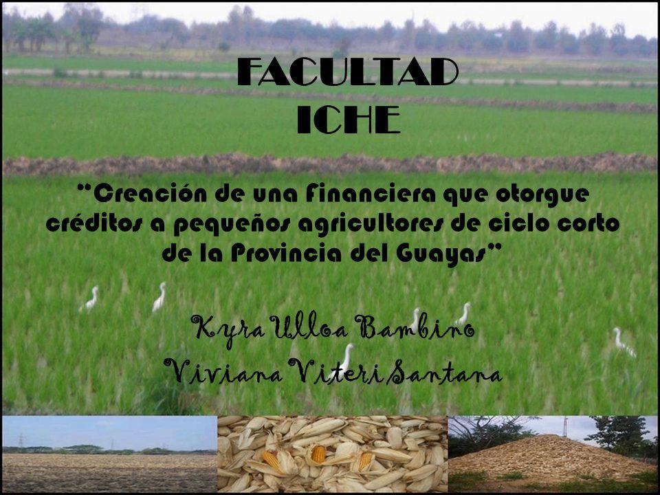 FACULTAD ICHE Creación de una Financiera que otorgue créditos a pequeños agricultores de ciclo corto de la Provincia del Guayas Kyra Ulloa Bambino Viv