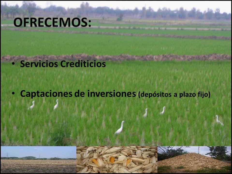 OFRECEMOS: Servicios Crediticios Captaciones de inversiones (depósitos a plazo fijo)