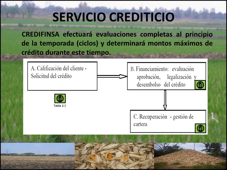 SERVICIO CREDITICIO CREDIFINSA efectuará evaluaciones completas al principio de la temporada (ciclos) y determinará montos máximos de crédito durante