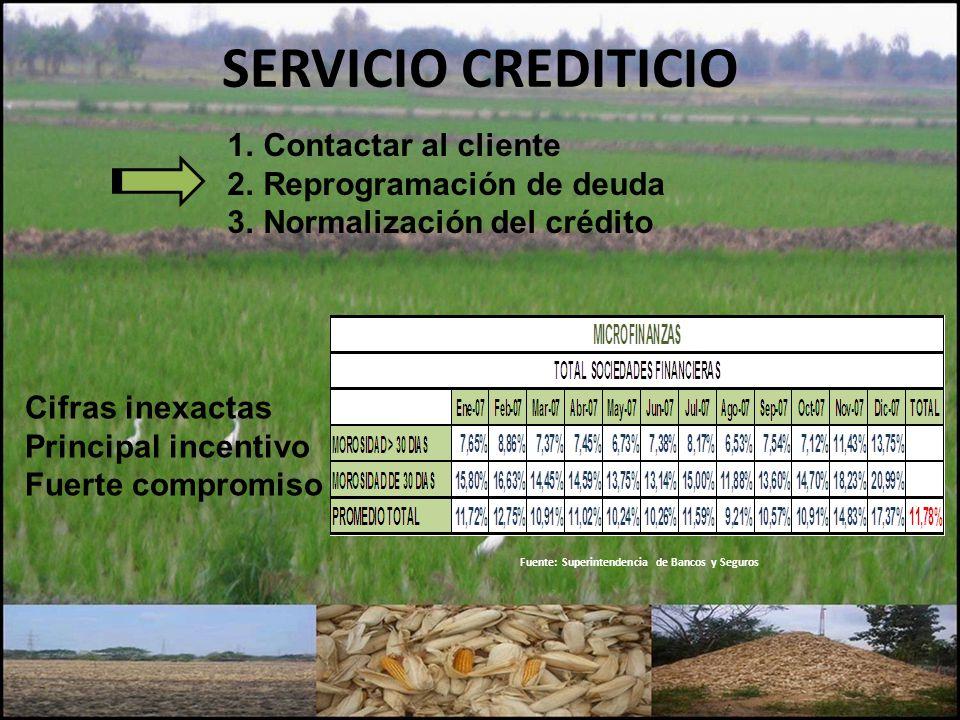 SERVICIO CREDITICIO Fuente: Superintendencia de Bancos y Seguros 1.Contactar al cliente 2.Reprogramación de deuda 3.Normalización del crédito Cifras i