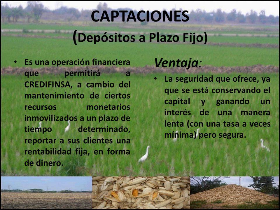 CAPTACIONES ( Depósitos a Plazo Fijo) Es una operación financiera que permitirá a CREDIFINSA, a cambio del mantenimiento de ciertos recursos monetario