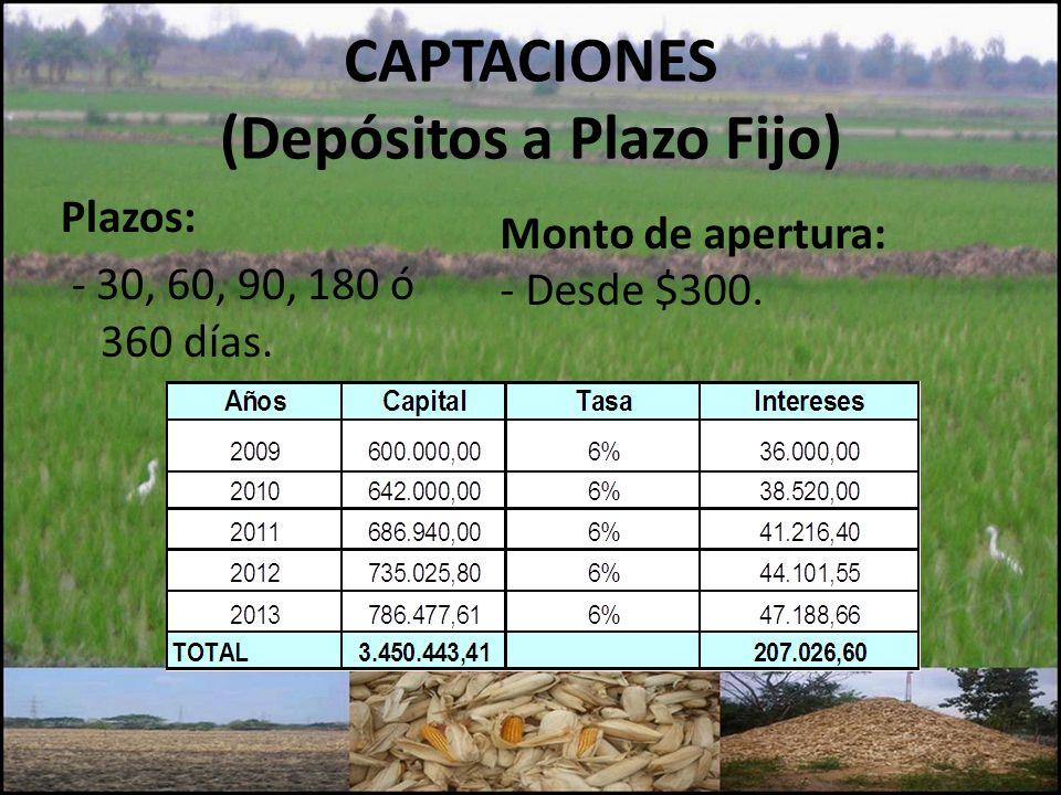 CAPTACIONES (Depósitos a Plazo Fijo) Plazos: - 30, 60, 90, 180 ó 360 días. Monto de apertura: - Desde $300.