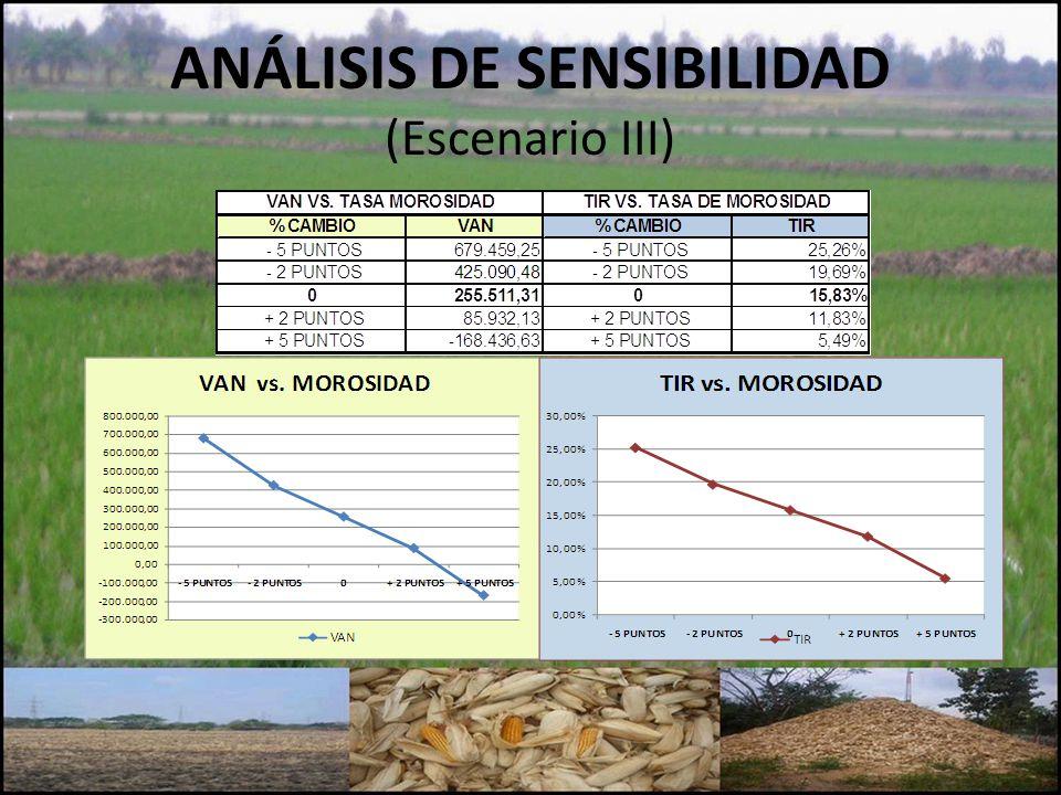 ANÁLISIS DE SENSIBILIDAD (Escenario III)
