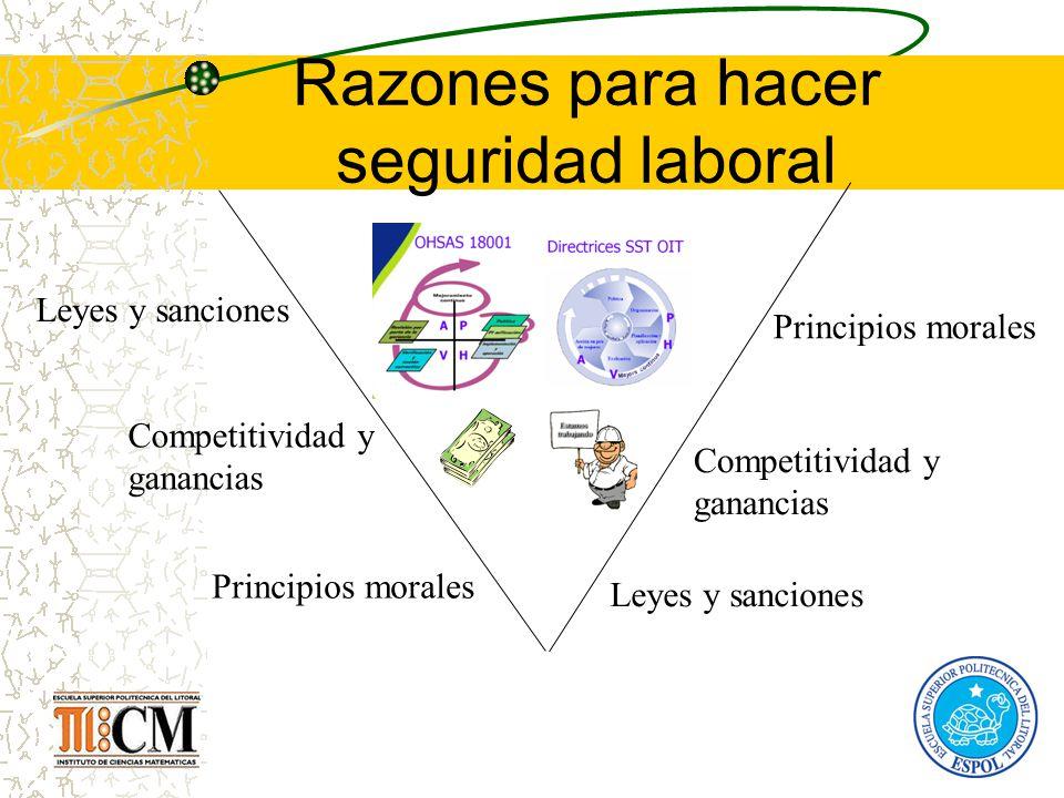 Razones para hacer seguridad laboral Leyes y sanciones Competitividad y ganancias Principios morales Leyes y sanciones Competitividad y ganancias Prin