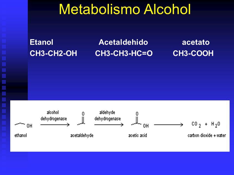 Metabolismo Alcohol Etanol Acetaldehido acetato CH3-CH2-OH CH3-CH3-HC=O CH3-COOH
