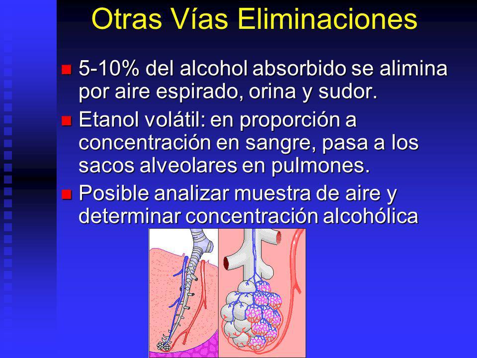 Otras Vías Eliminaciones 5-10% del alcohol absorbido se alimina por aire espirado, orina y sudor. 5-10% del alcohol absorbido se alimina por aire espi