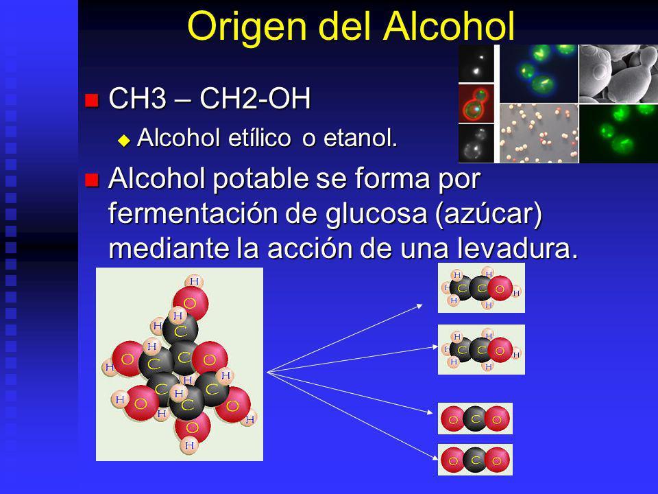 Origen del Alcohol CH3 – CH2-OH CH3 – CH2-OH Alcohol etílico o etanol. Alcohol etílico o etanol. Alcohol potable se forma por fermentación de glucosa