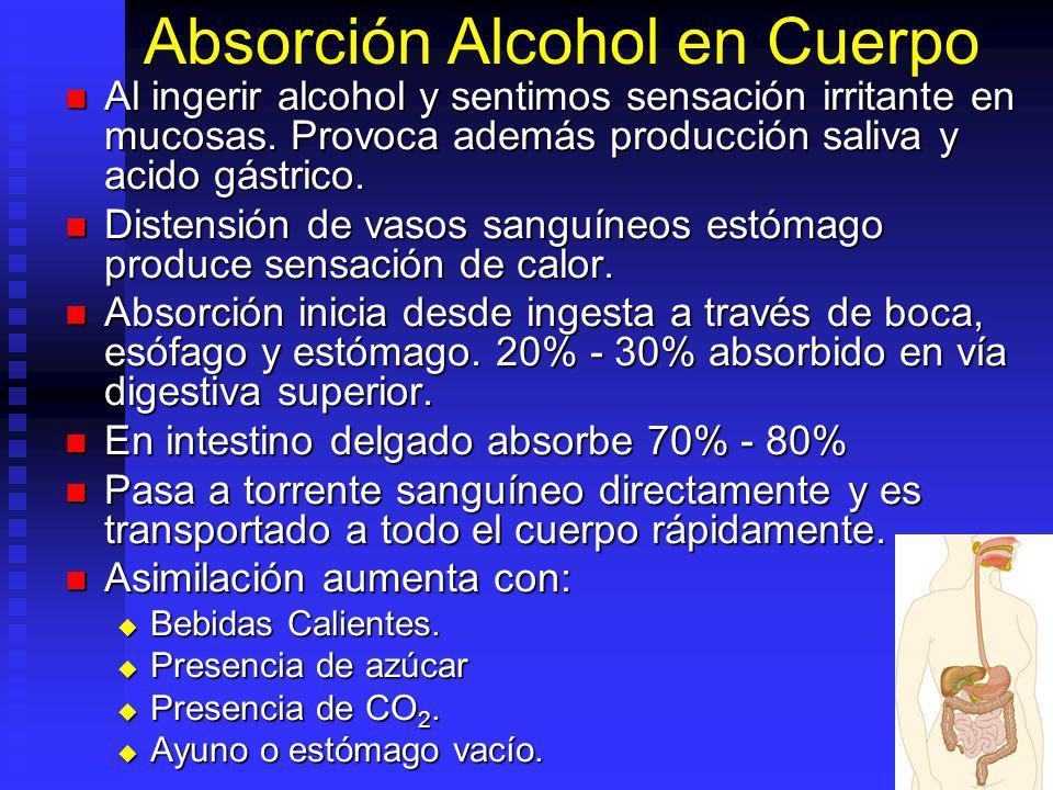 Absorción Alcohol en Cuerpo Al ingerir alcohol y sentimos sensación irritante en mucosas. Provoca además producción saliva y acido gástrico. Al ingeri