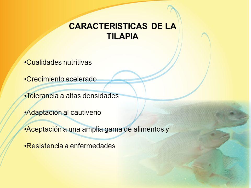 PRINCIPALES EMPRESAS EMPACADORAS Y EXPORTADORAS