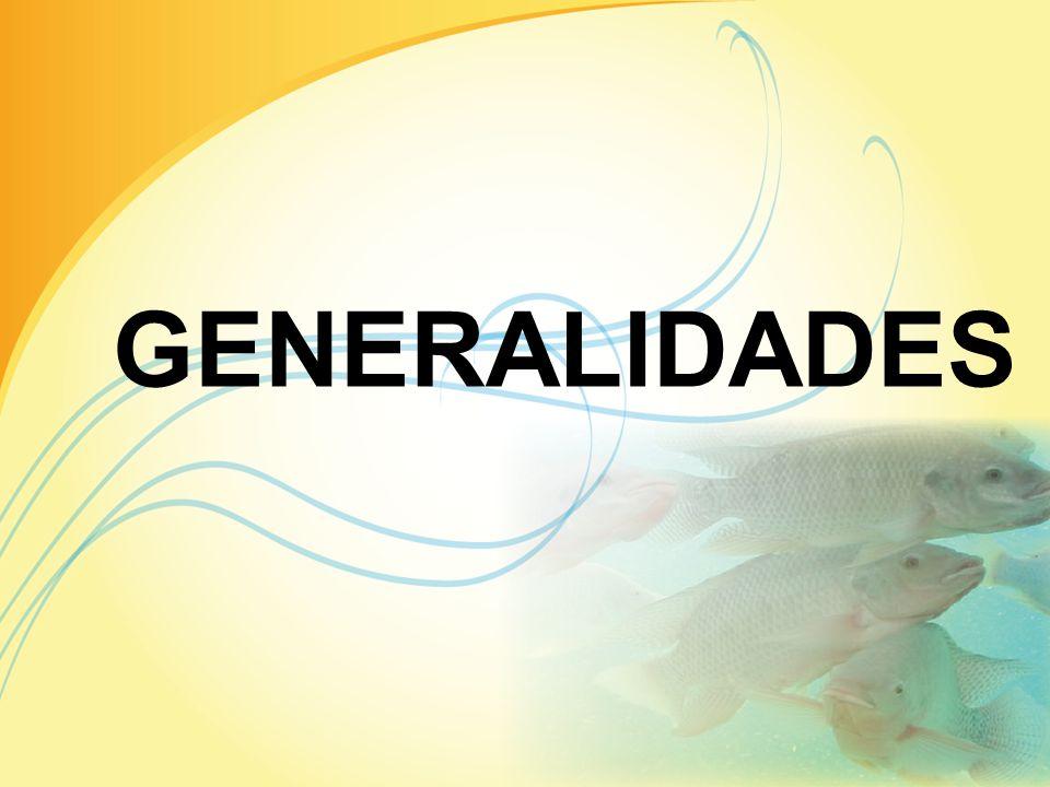 PRESENTADO POR: GLENDA ALCÁZAR M. ANDREA CENTANARO M. JOHANNA VALLADOLID