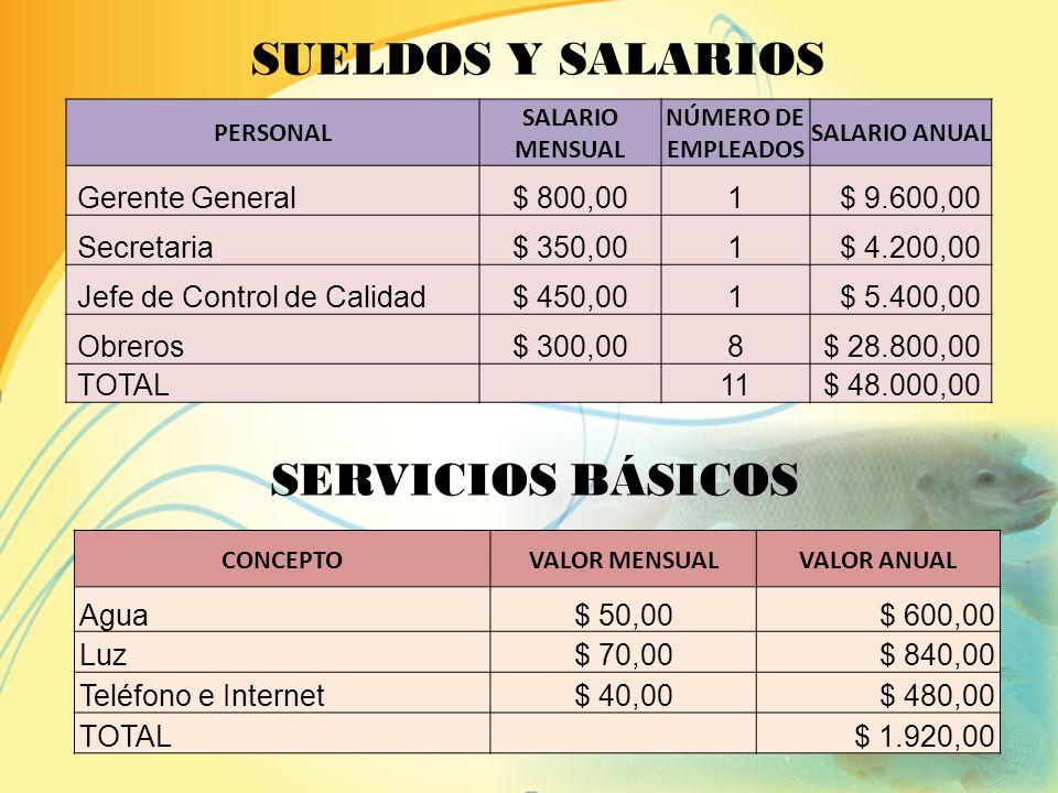 Sueldos y Salarios Servicios Básicos Gastos de Alquiler Gastos de Combustibles Gastos de Transporte G A S T O S