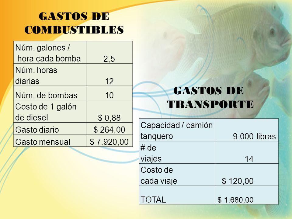 SUELDOS Y SALARIOS PERSONAL SALARIO MENSUAL NÚMERO DE EMPLEADOS SALARIO ANUAL Gerente General $ 800,001$ 9.600,00 Secretaria $ 350,001$ 4.200,00 Jefe