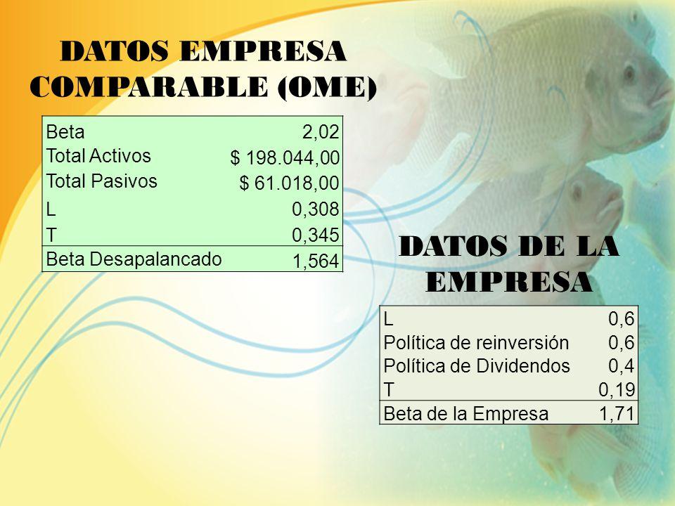 ESTRUCTURA DE FINANCIAMIENTO FinanciamientoCapital PropioInversión $ 160.038,00$ 106.692,00$ 266.730,00 Tasa10% No. Pagos10 Valor deuda$ 160.038,00 Cu