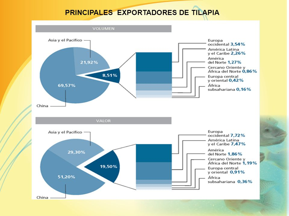 MERCADO MUNDIAL DE LA TILAPIA EN CRECIMIENTO