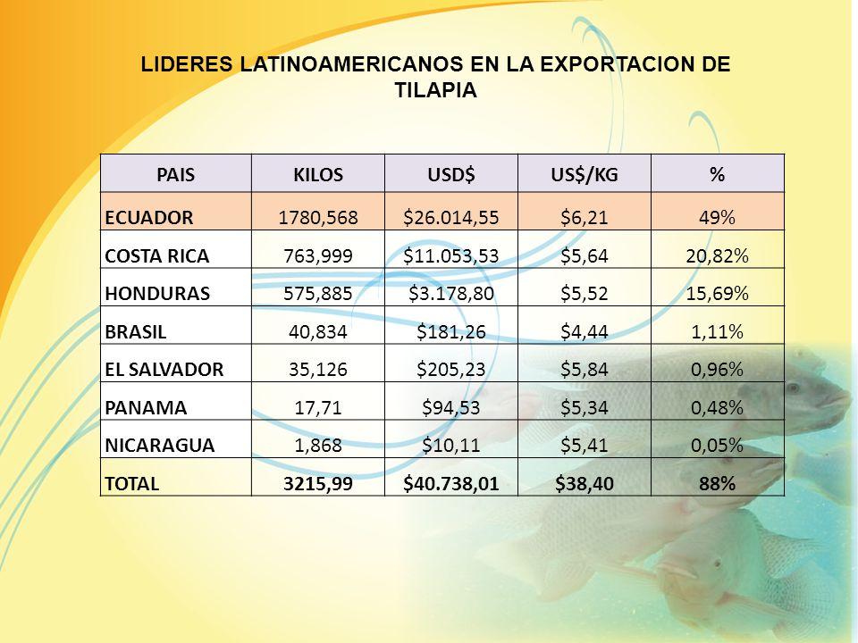 LIDERES LATINOAMERICANOS EN LA EXPORTACION DE TILAPIA PAISKILOSUSD$US$/KG% ECUADOR1780,568$26.014,55$6,2149% COSTA RICA763,999$11.053,53$5,6420,82% HONDURAS575,885$3.178,80$5,5215,69% BRASIL40,834$181,26$4,441,11% EL SALVADOR35,126$205,23$5,840,96% PANAMA17,71$94,53$5,340,48% NICARAGUA1,868$10,11$5,410,05% TOTAL3215,99$40.738,01$38,4088%