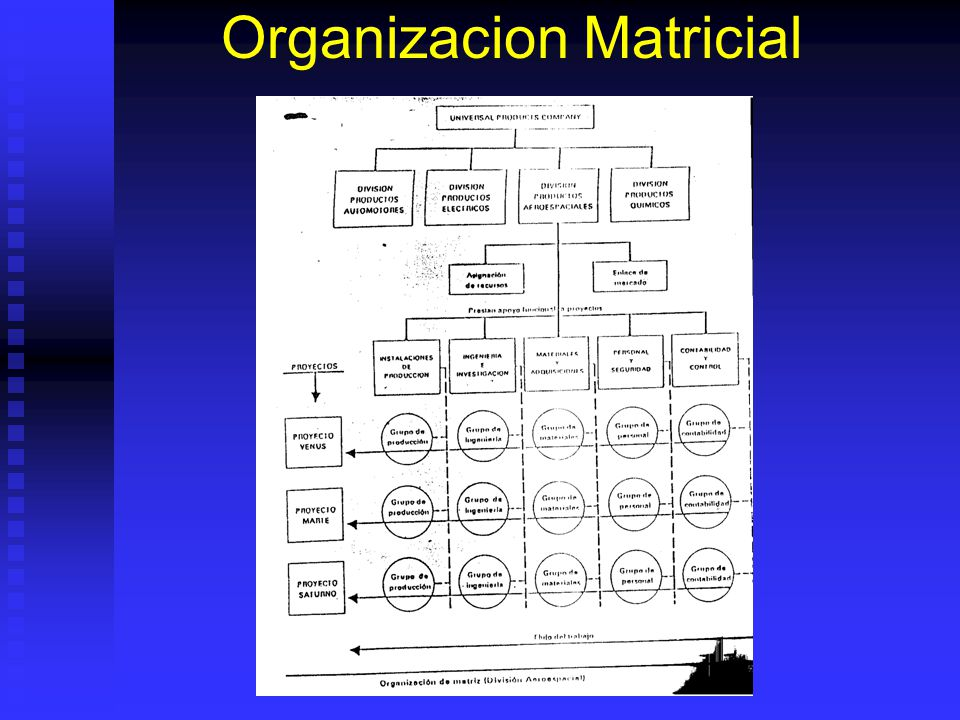 Organizacion Matricial