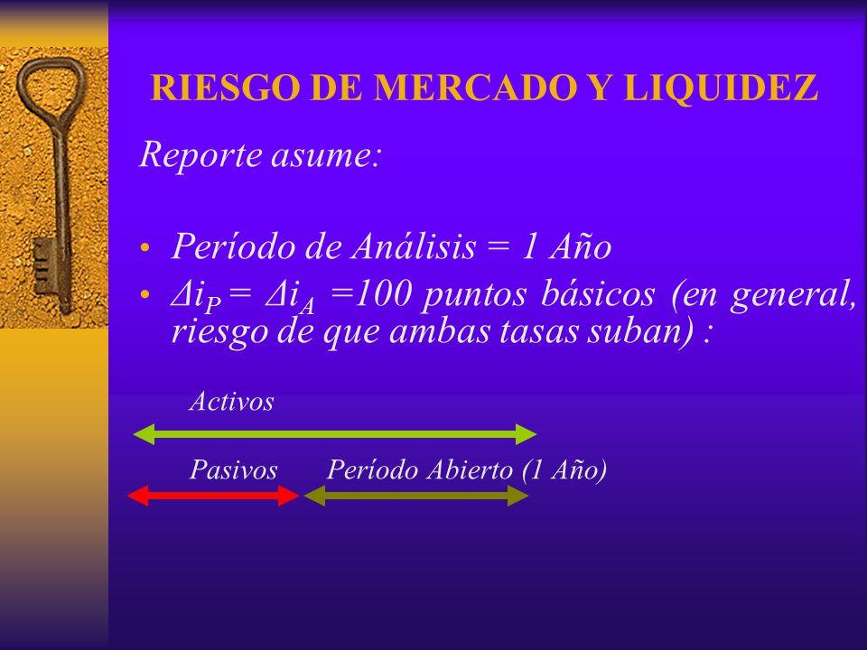 RIESGO DE MERCADO Y LIQUIDEZ Reporte asume: Período de Análisis = 1 Año Δi P = Δi A =100 puntos básicos (en general, riesgo de que ambas tasas suban)