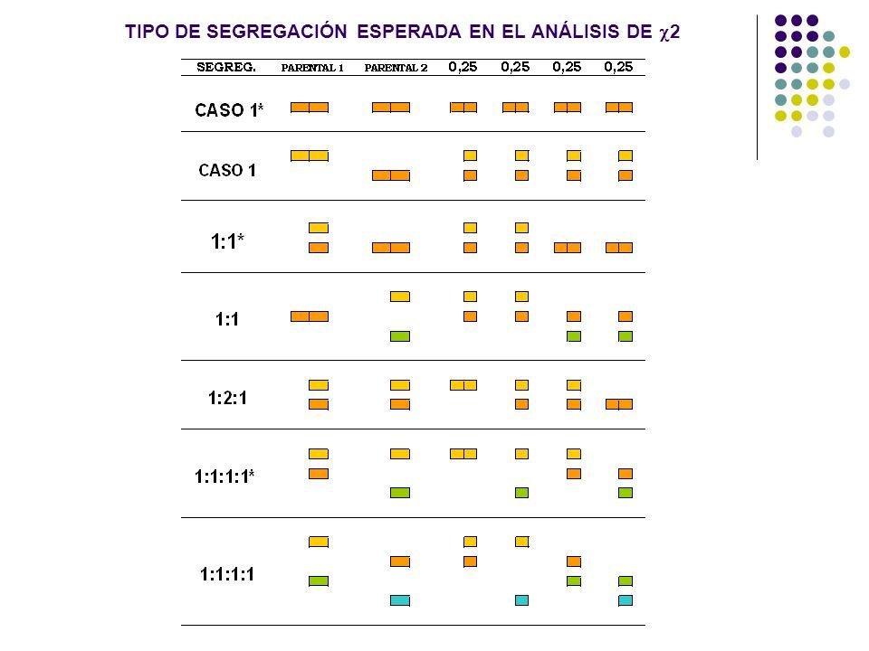 TIPO DE SEGREGACIÓN ESPERADA EN EL ANÁLISIS DE 2