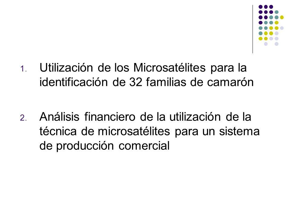1. Utilización de los Microsatélites para la identificación de 32 familias de camarón 2. Análisis financiero de la utilización de la técnica de micros