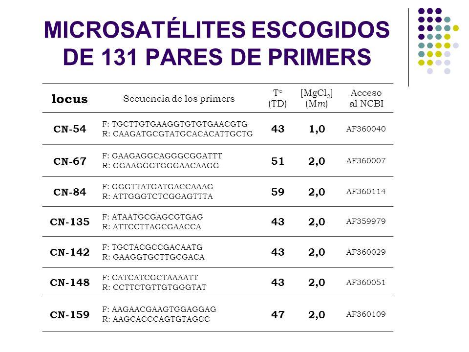 MICROSATÉLITES ESCOGIDOS DE 131 PARES DE PRIMERS locus Secuencia de los primers T° (TD) [MgCl 2 ] (M m ) Acceso al NCBI CN-54 F: TGCTTGTGAAGGTGTGTGAAC