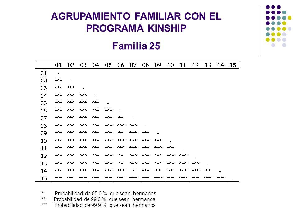 AGRUPAMIENTO FAMILIAR CON EL PROGRAMA KINSHIP Familia 25 * Probabilidad de 95,0 % que sean hermanos ** Probabilidad de 99,0 % que sean hermanos *** Pr