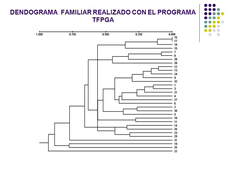 DENDOGRAMA FAMILIAR REALIZADO CON EL PROGRAMA TFPGA