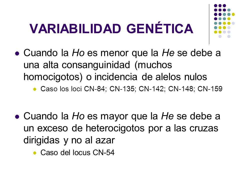 VARIABILIDAD GENÉTICA Cuando la Ho es menor que la He se debe a una alta consanguinidad (muchos homocigotos) o incidencia de alelos nulos Caso los loc