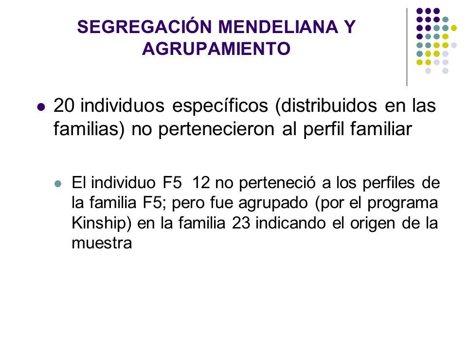SEGREGACIÓN MENDELIANA Y AGRUPAMIENTO 20 individuos específicos (distribuidos en las familias) no pertenecieron al perfil familiar El individuo F5 12