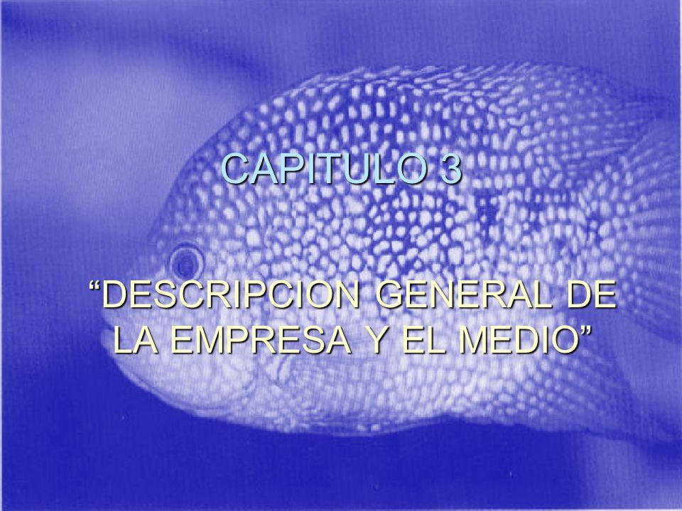CAPITULO 3 DESCRIPCION GENERAL DE LA EMPRESA Y EL MEDIO