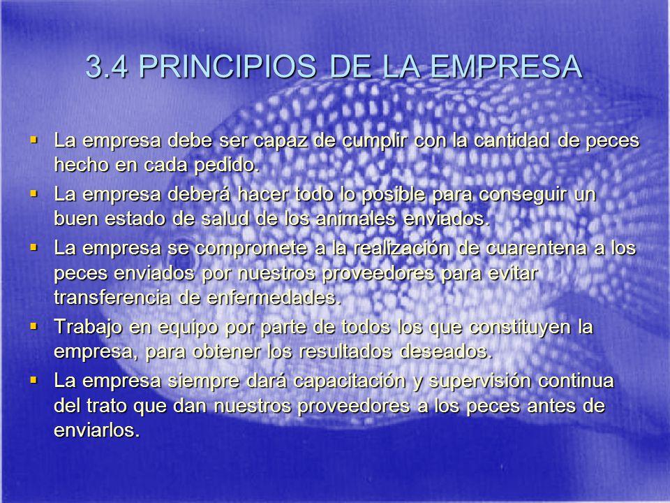 3.4 PRINCIPIOS DE LA EMPRESA La empresa debe ser capaz de cumplir con la cantidad de peces hecho en cada pedido.