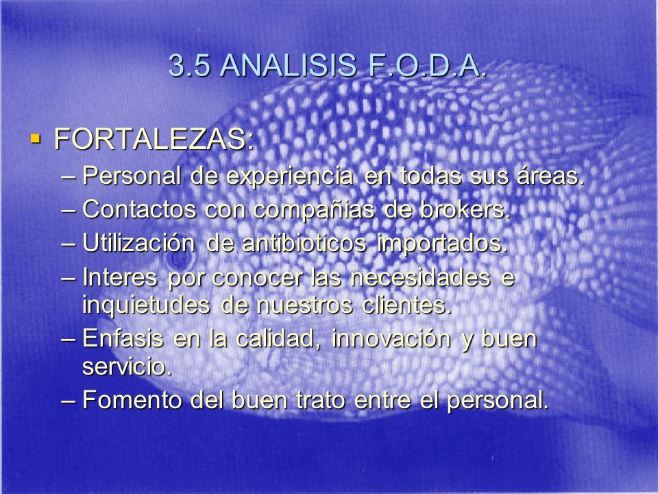 3.5 ANALISIS F.O.D.A.FORTALEZAS: FORTALEZAS: –Personal de experiencia en todas sus áreas.