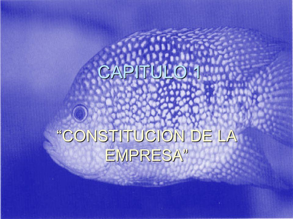 CAPITULO 1 CONSTITUCION DE LA EMPRESA
