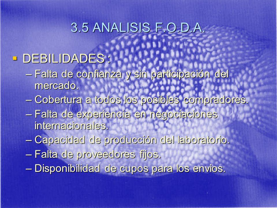 3.5 ANALISIS F.O.D.A.