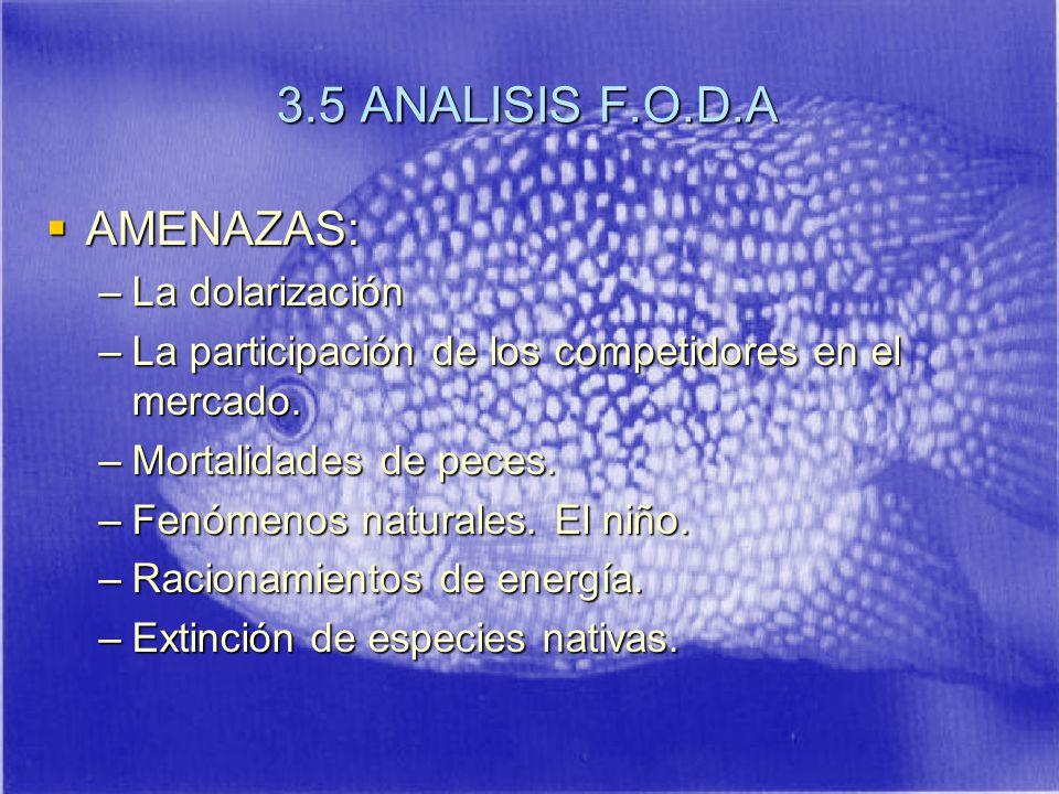 3.5 ANALISIS F.O.D.A AMENAZAS: AMENAZAS: –La dolarización –La participación de los competidores en el mercado.