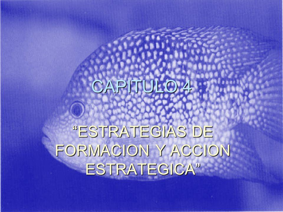 CAPITULO 4 ESTRATEGIAS DE FORMACION Y ACCION ESTRATEGICA