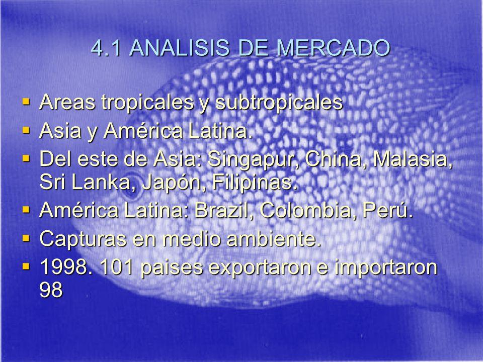 4.1 ANALISIS DE MERCADO Areas tropicales y subtropicales Areas tropicales y subtropicales Asia y América Latina.