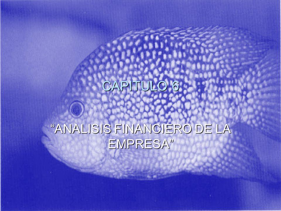 CAPITULO 6 ANALISIS FINANCIERO DE LA EMPRESA