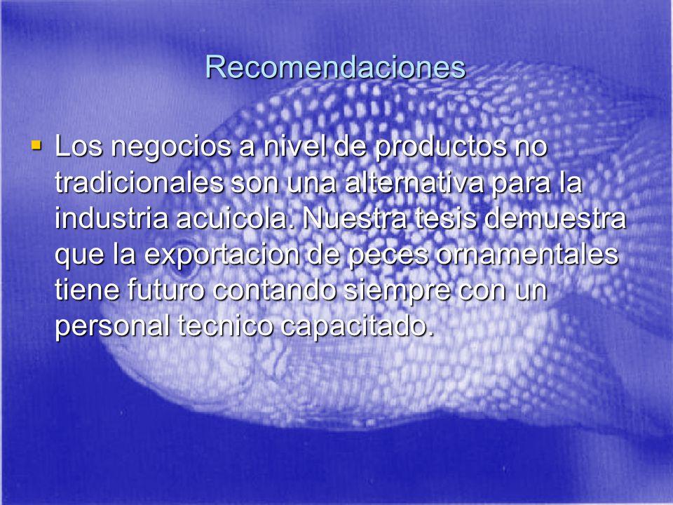 Recomendaciones Los negocios a nivel de productos no tradicionales son una alternativa para la industria acuicola.
