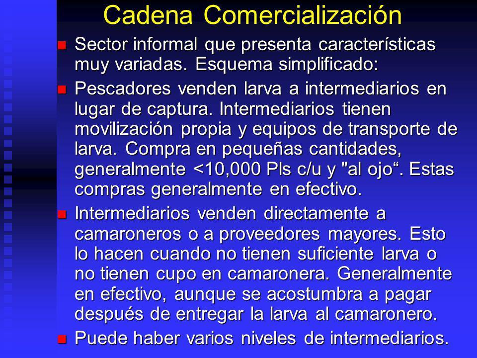 Cadena Comercialización Sector informal que presenta características muy variadas. Esquema simplificado: Sector informal que presenta características