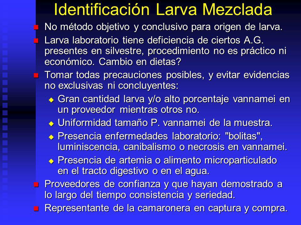 Identificación Larva Mezclada No método objetivo y conclusivo para origen de larva. No método objetivo y conclusivo para origen de larva. Larva labora