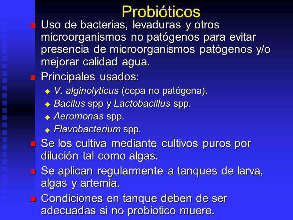 Probióticos Uso de bacterias, levaduras y otros microorganismos no patógenos para evitar presencia de microorganismos patógenos y/o mejorar calidad ag
