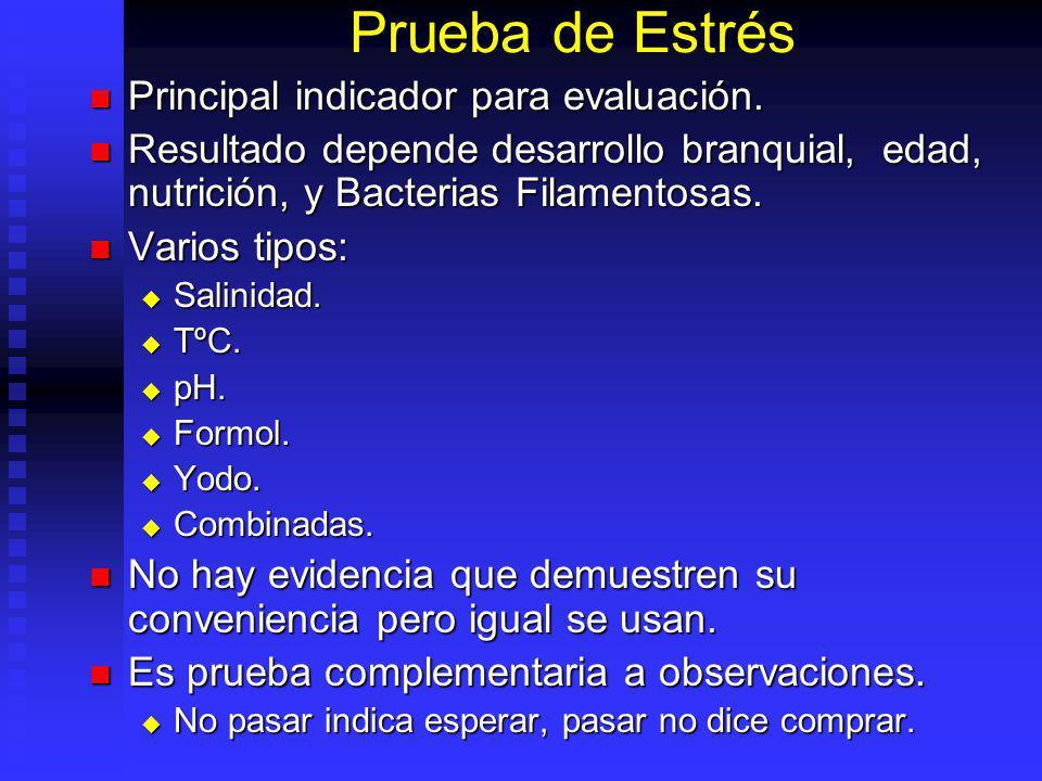 Prueba de Estrés Principal indicador para evaluación. Principal indicador para evaluación. Resultado depende desarrollo branquial, edad, nutrición, y