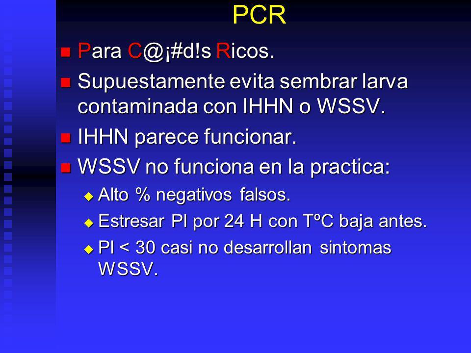 PCR Para C@¡#d!s Ricos. Para C@¡#d!s Ricos. Supuestamente evita sembrar larva contaminada con IHHN o WSSV. Supuestamente evita sembrar larva contamina