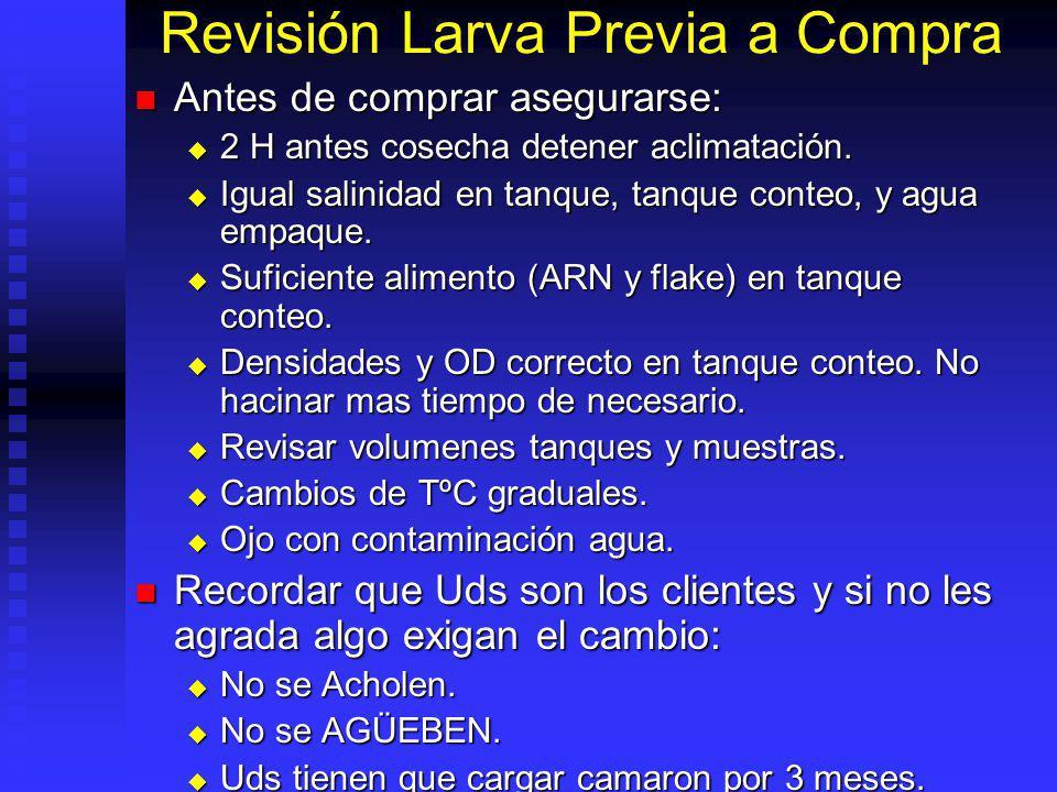 Revisión Larva Previa a Compra Antes de comprar asegurarse: Antes de comprar asegurarse: 2 H antes cosecha detener aclimatación. 2 H antes cosecha det