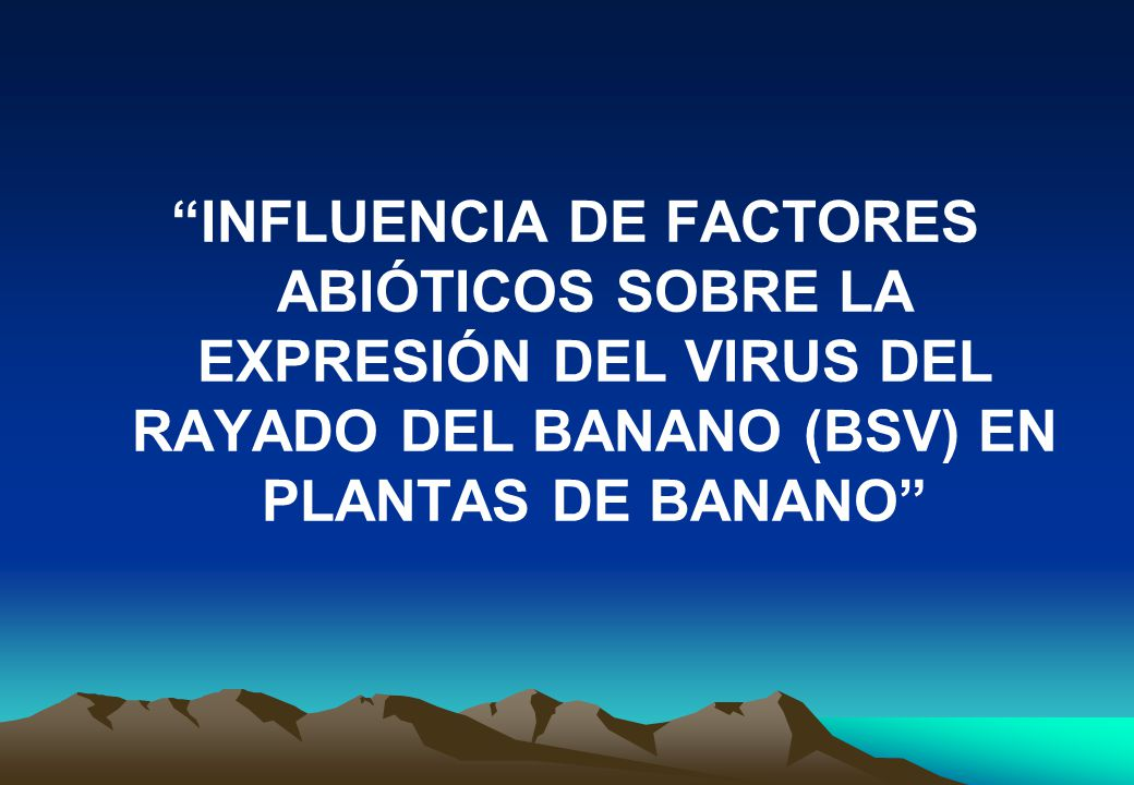 INFLUENCIA DE FACTORES ABIÓTICOS SOBRE LA EXPRESIÓN DEL VIRUS DEL RAYADO DEL BANANO (BSV) EN PLANTAS DE BANANO