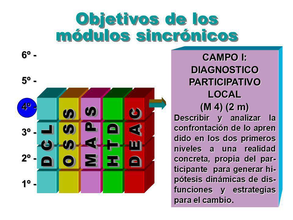 Objetivos de los módulos sincrónicos 6º - 5º - 4º - 3º - 2º - 1º - O S S S M A P S D E A C D C L H T D CAMPO I: DIAGNOSTICO PARTICIPATIVO LOCAL (M 4) (2 m) Describir y analizar la confrontación de lo apren dido en los dos primeros niveles a una realidad concreta, propia del par- ticipante para generar hi- pótesis dinámicas de dis- funciones y estrategias para el cambio Describir y analizar la confrontación de lo apren dido en los dos primeros niveles a una realidad concreta, propia del par- ticipante para generar hi- pótesis dinámicas de dis- funciones y estrategias para el cambio.