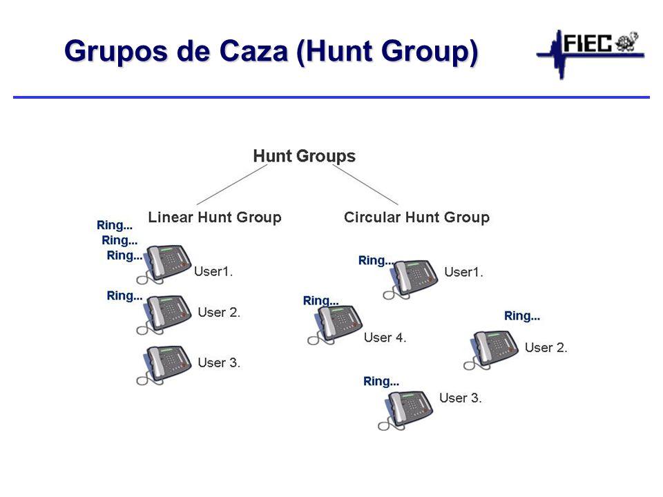 Grupos de Caza (Hunt Group)