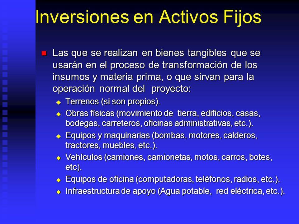 Plan de Inversiones en Proyectos Acuicolas Activos fijos Activos fijos Activos intangibles Activos intangibles Capital de trabajo Capital de trabajo