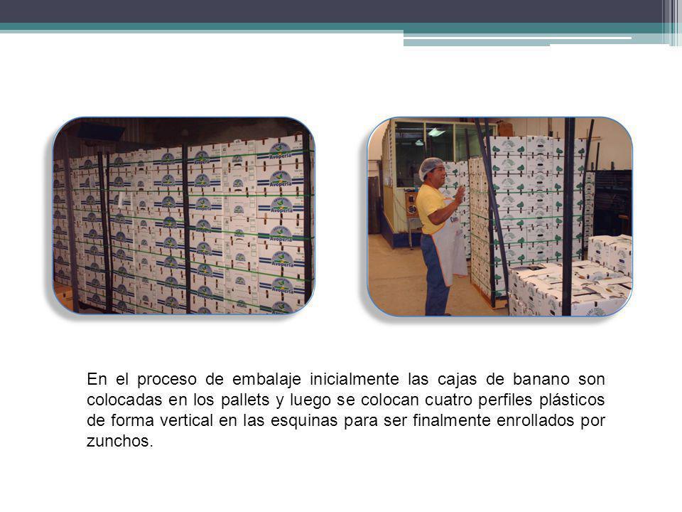 En el proceso de embalaje inicialmente las cajas de banano son colocadas en los pallets y luego se colocan cuatro perfiles plásticos de forma vertical